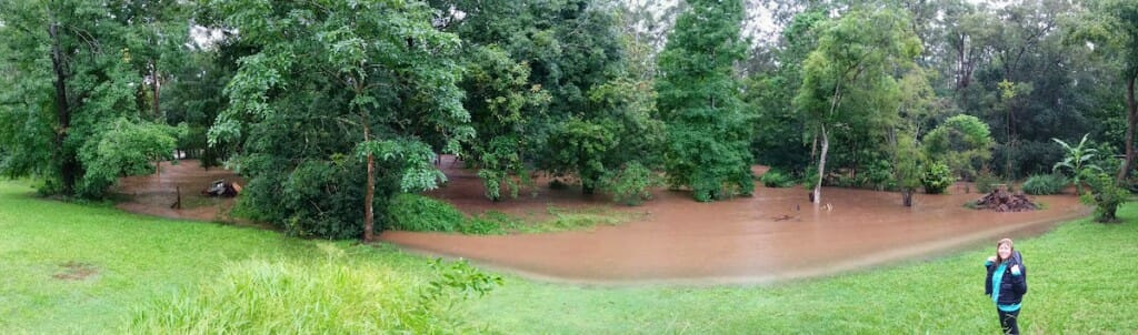 Floods still high on the garden